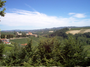 Winzer Barolo Agriturismo